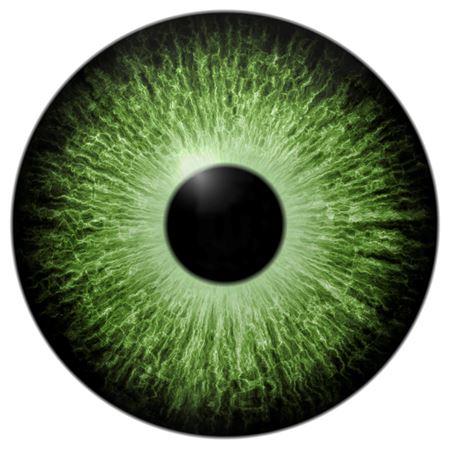 Bild für Kategorie Augen